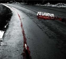 neuronia_fallow