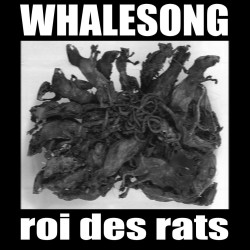 WHALESONG_Roi.Des.Rats